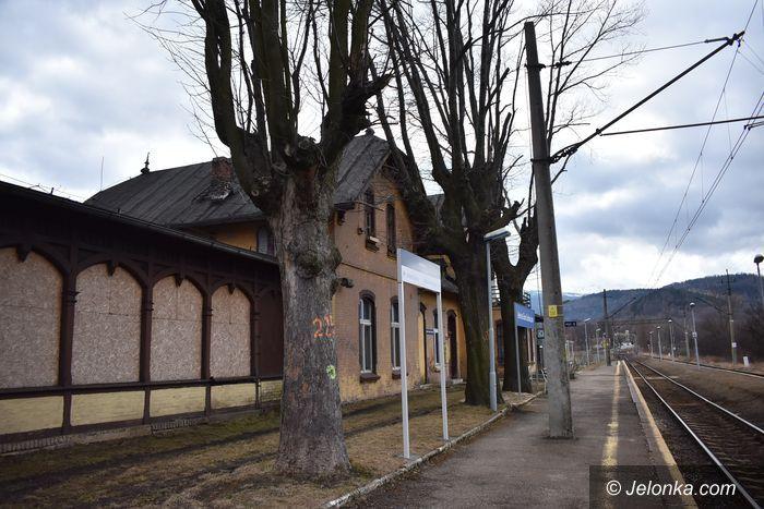 Jelenia Góra: Czytelnik: Niebezpieczne drzewa na peronie
