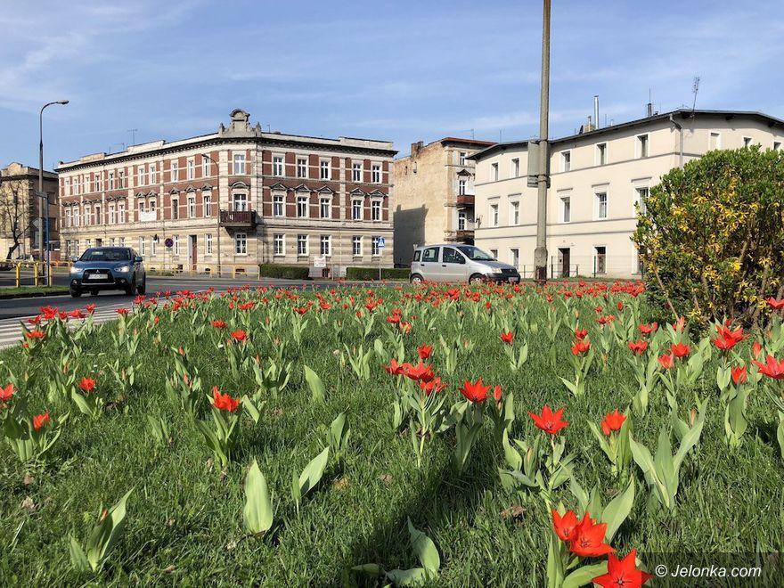 Jelenia Góra: Skwery kwitną, fontanny czekają na maj