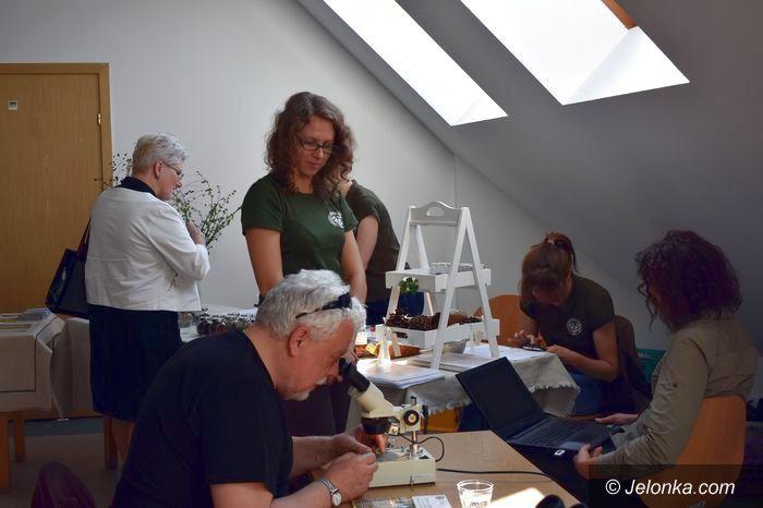 Jelenia Góra: Światowy Dzień Książki z karkonoskimi ziołami