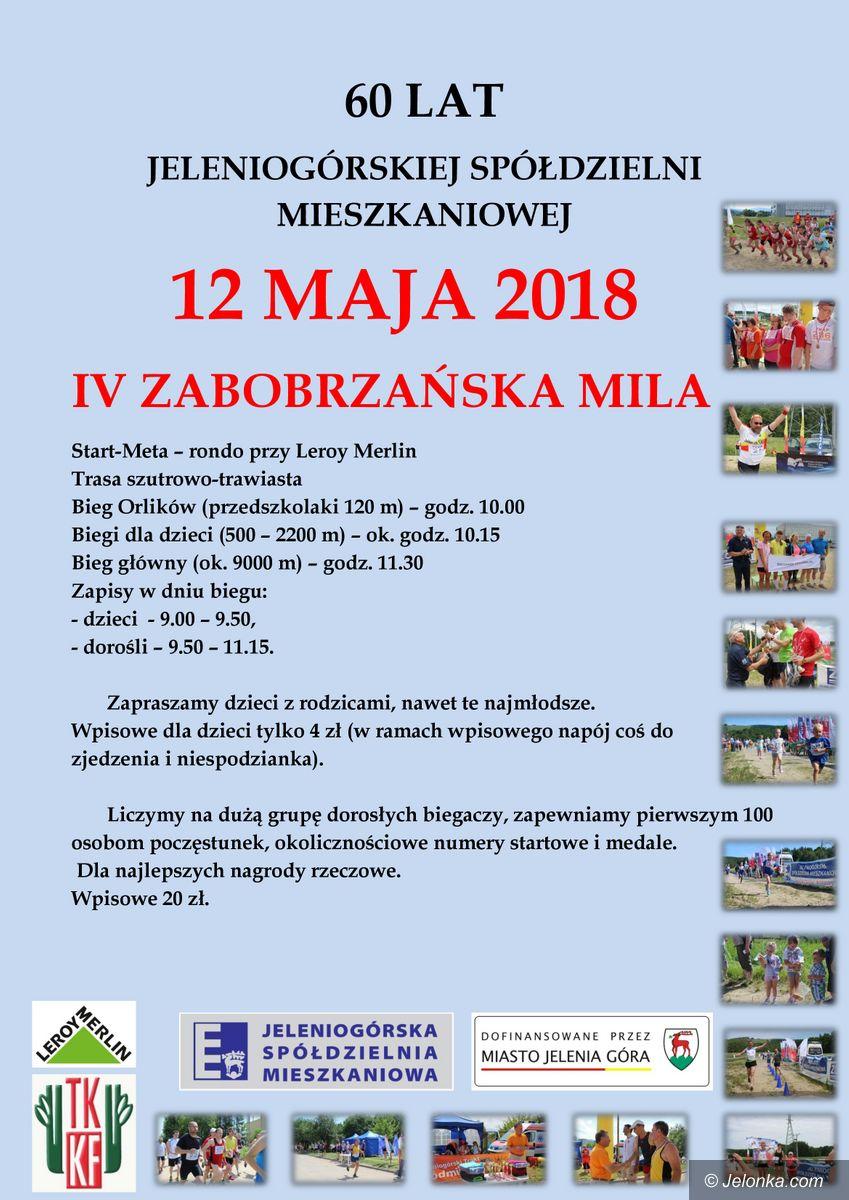 Jelenia Góra: Zabobrzańska Mila po raz czwarty