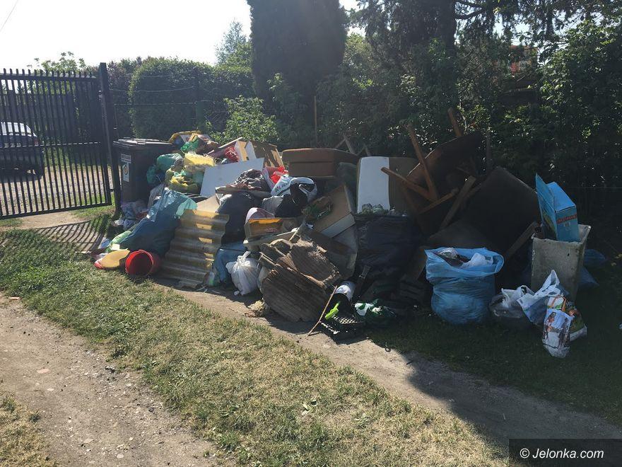 Jelenia Góra: Znikną graty z ogrodów