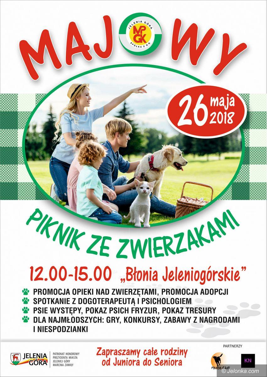 Jelenia Góra: W sobotę piknik ze zwierzakami