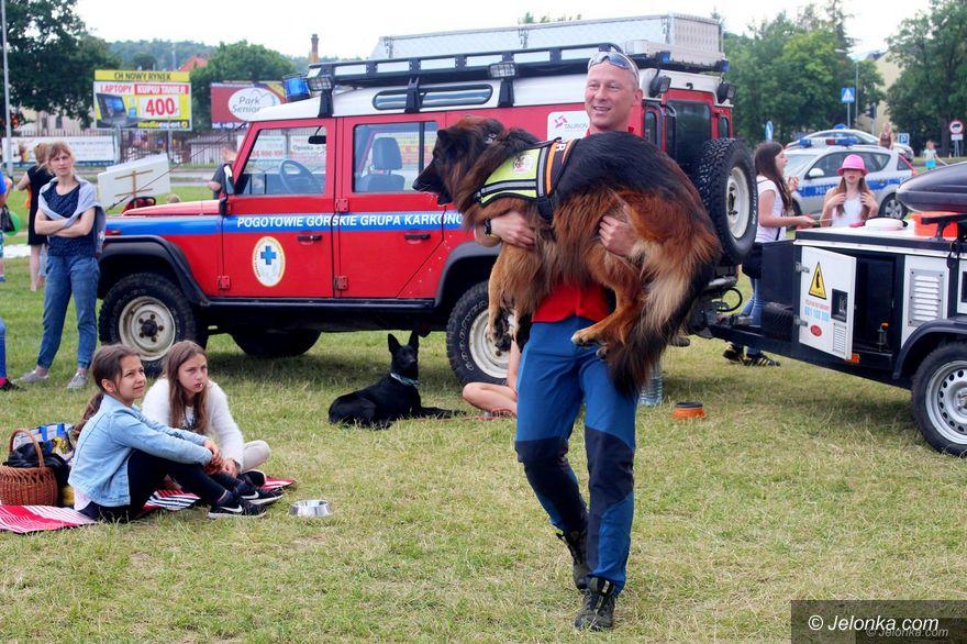 Jelenia Góra: Oni kochają zwierzęta!