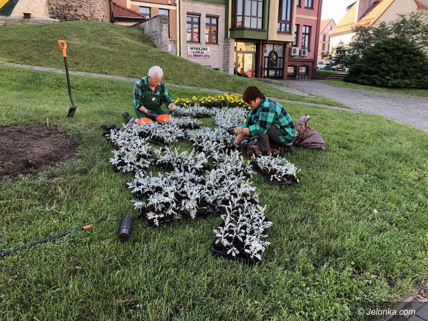 Jelenia Góra: W mieście codziennie przybywa kwiatów