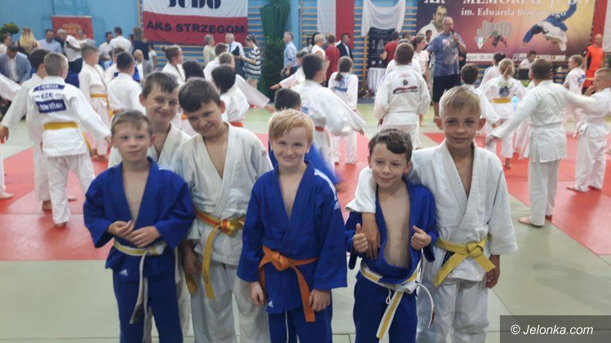 Strzegom: Jeleniogórscy judocy z czterema medalami