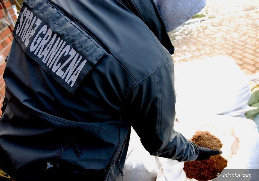 Jelenia Góra: SG zlikwidowała krajalnię tytoniu