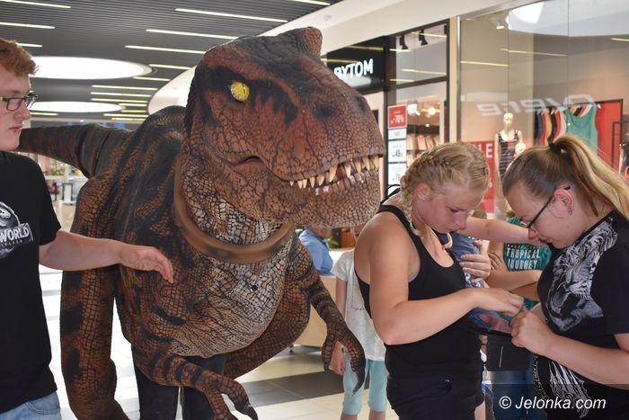 Jelenia Góra: Świat dinozaurów w Galerii Sudeckiej