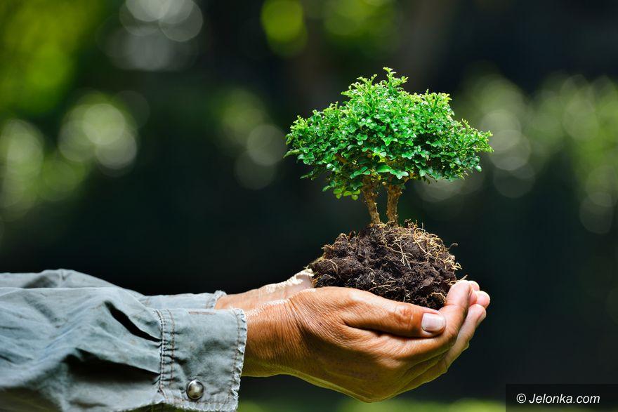 Region: Instytucje związane z ochroną środowiska