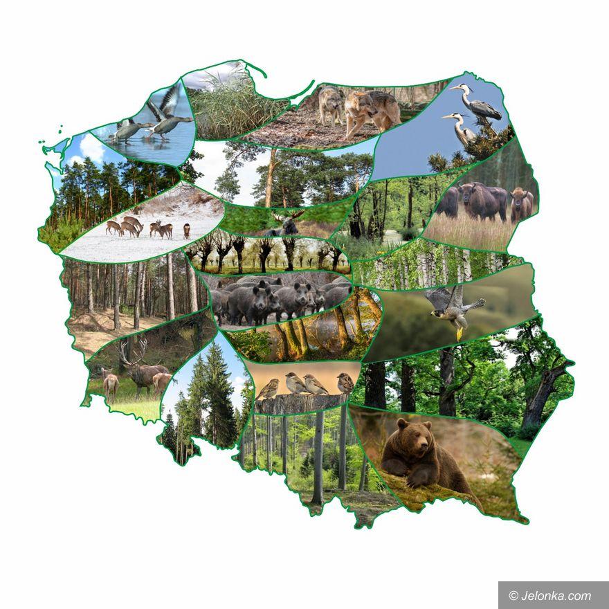 """Region: """"Przyrodnicze"""" nazwy miejscowości w regionie"""