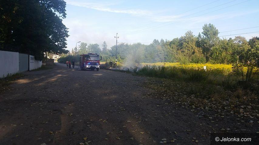 Jelenia Góra: Pożary nieużytków przy ulicy Lubańskiej