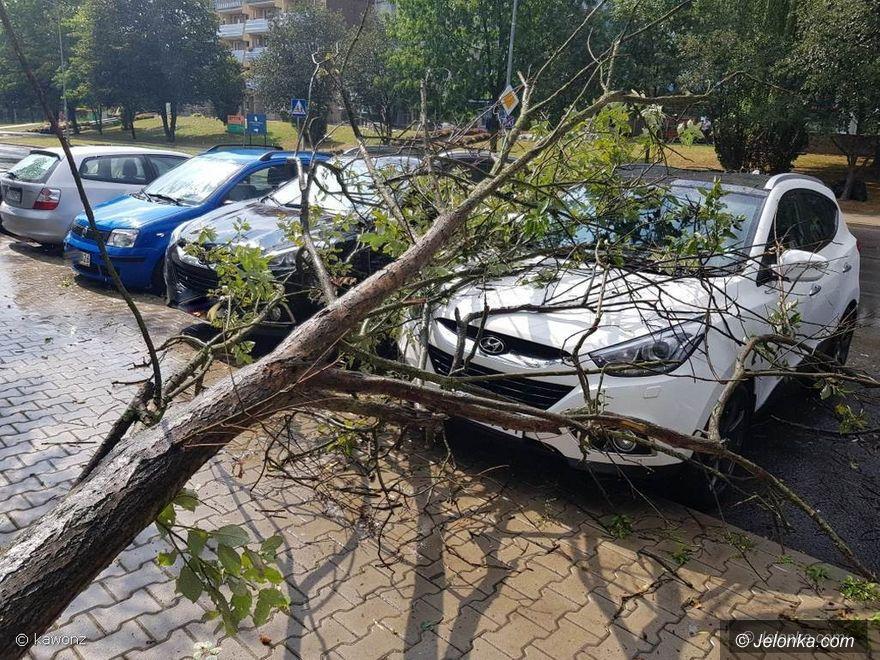 Jelenia Góra: Na Zabobrzu drzewo spadło na dwa auta