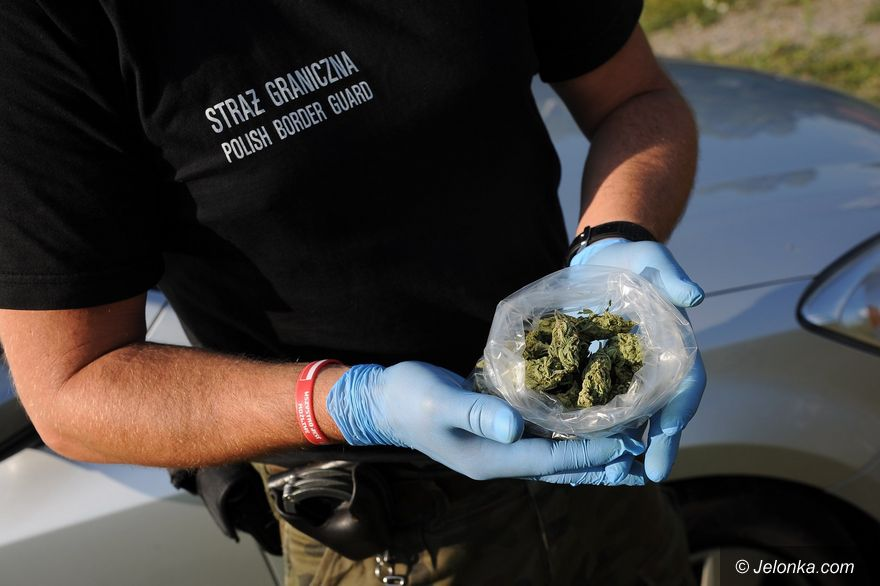 Jelenia Góra: Zatrzymany za posiadanie marihuany