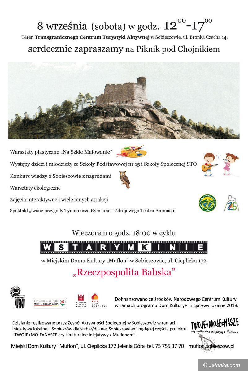 Jelenia Góra: Ekowarsztaty i kino
