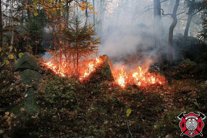 Region: To był dla strażaków bardzo trudny tydzień