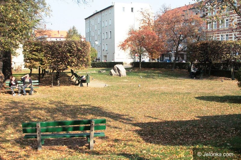Jelenia Góra: Awantura o drzewa