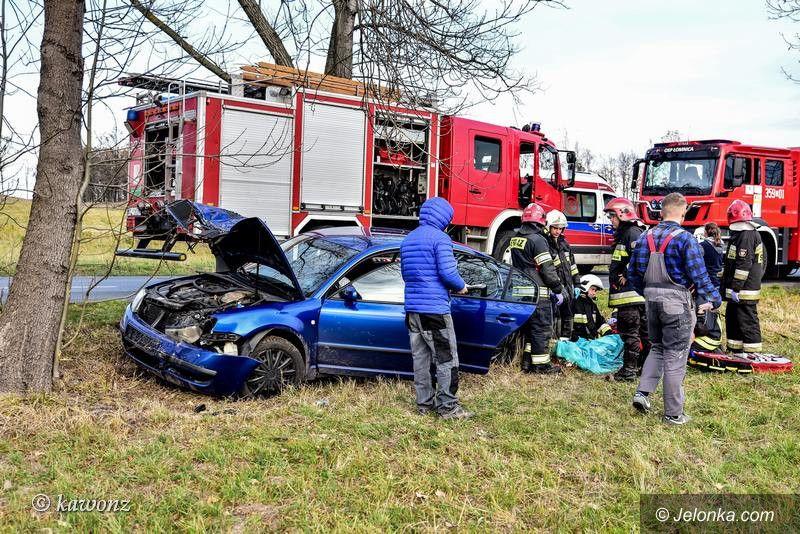 Łomnica: Zderzenie skody z drzewem w Łomnicy