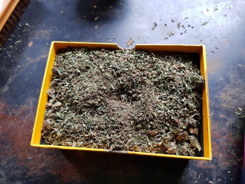 Powiat: Areszt za narkotyki