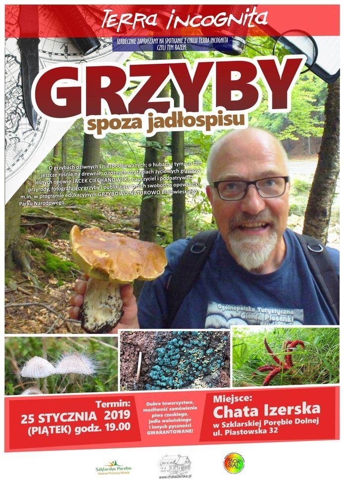 Szklarska Poręba: Terra Incognita o grzybach