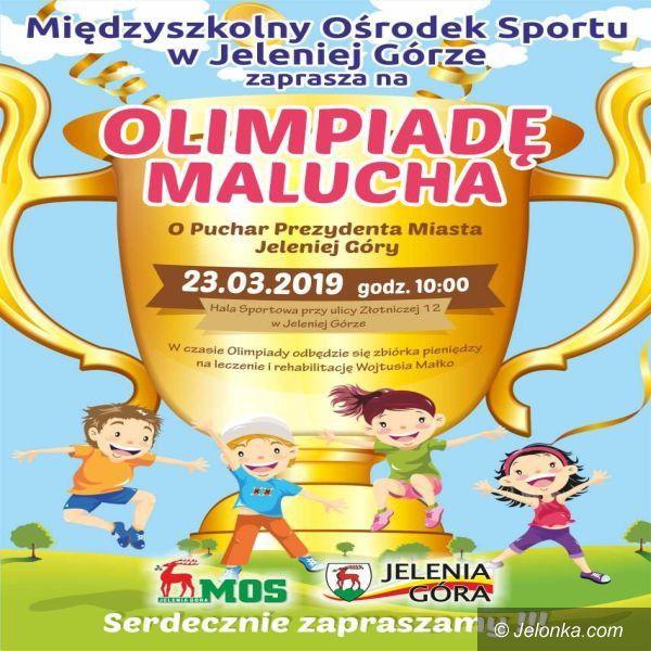 Jelenia Góra: Już w sobotę kolejna Olimpiada Malucha