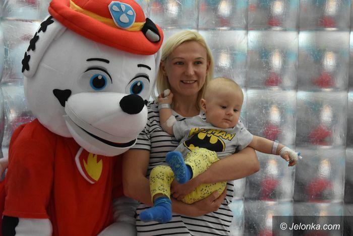 Jelenia Góra: Święto na pediatrii