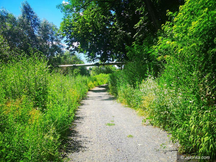 Jelenia Góra: Promenada Bobru... którego nie widać