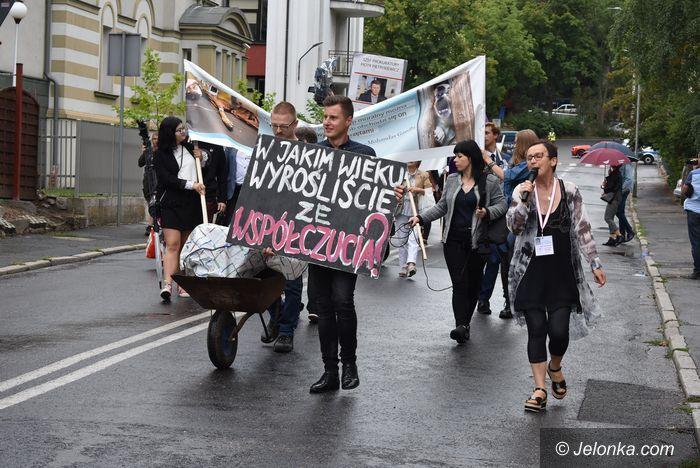 Jelenia Góra: W obronie zwierząt