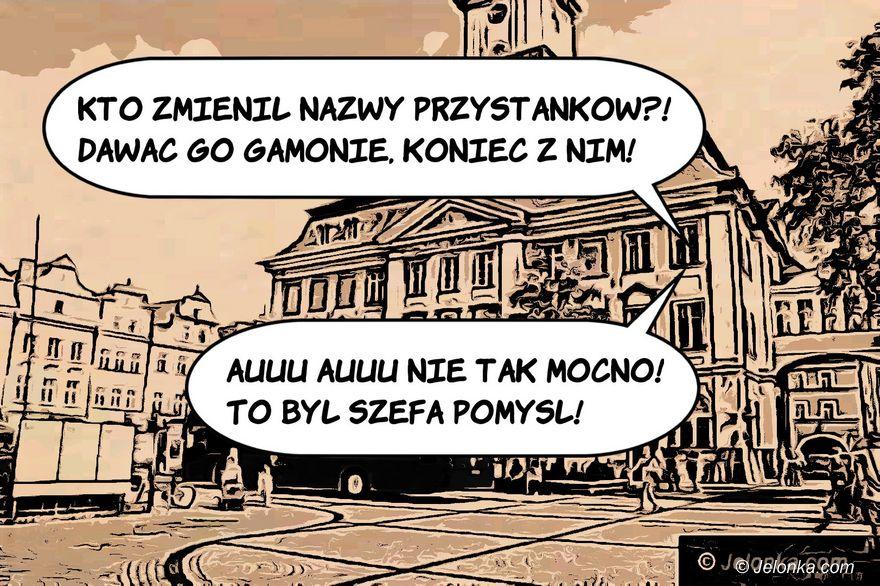 Jelenia Góra: Podsumowanie tygodnia - zdjęcie 6