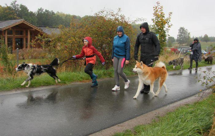 Podgórzyn: Deszczowy dogtrekking