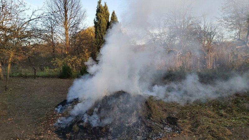 Jelenia Góra: Mandaty za palenie liści (i nie tylko)