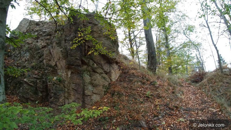 Powiat: Wędrówka przez Jeleniec na Koziniec