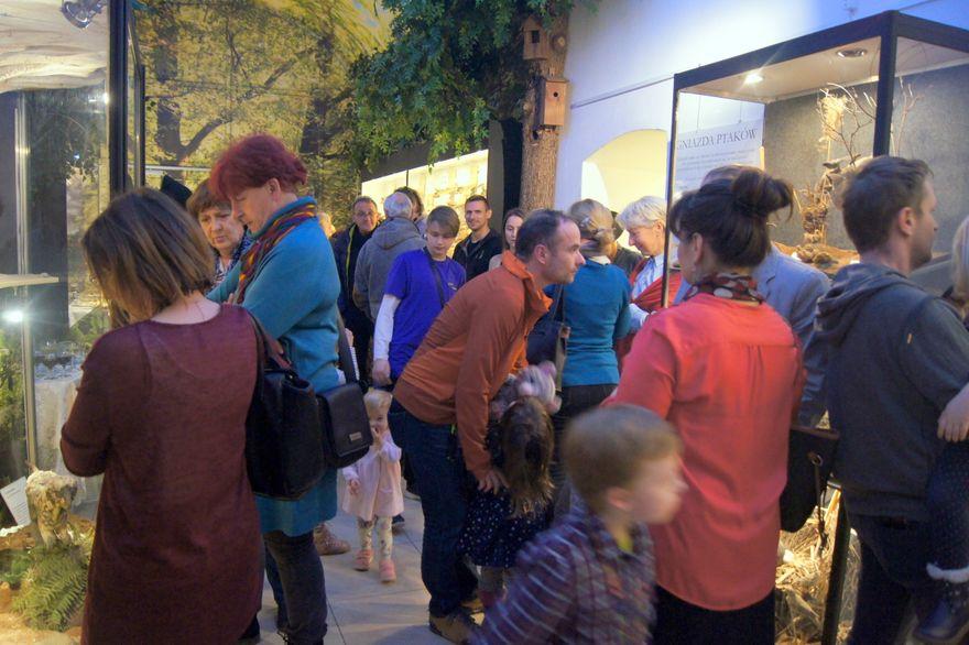 Jelenia Góra: Takiej ekspozycji jeszcze nie było!