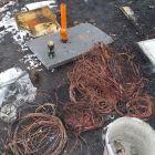 Jelenia Góra: Wypalali kable – zapłacą za to