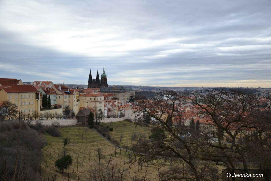 Praga: Dzień w Pradze