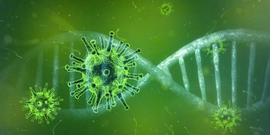 Region: Informacja wojewody w sprawie koronawirusa (aktualizacja)