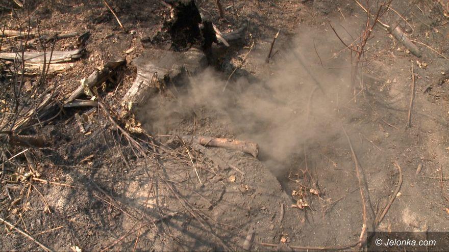 Jelenia Góra: Płoną nieużytki