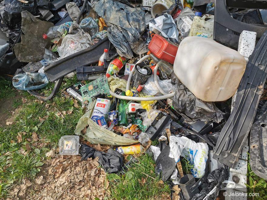 Jelenia Góra: Czas to posprzątać!