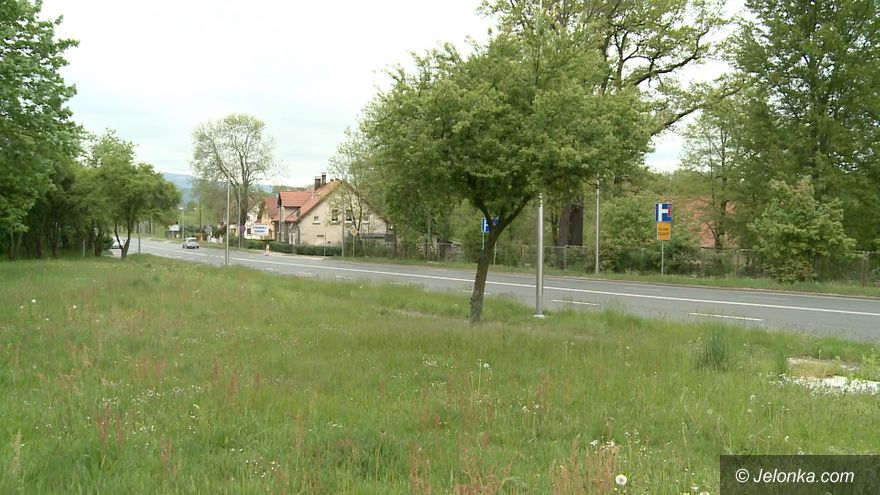 Jelenia Góra: Problem z bezdomnymi na ulicy Poznańskiej