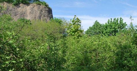 Złotoryja: Zwłoki pod Wilczą Górą