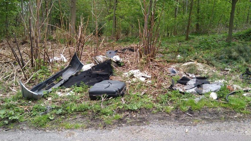 Region: Zabierz śmieci z lasu