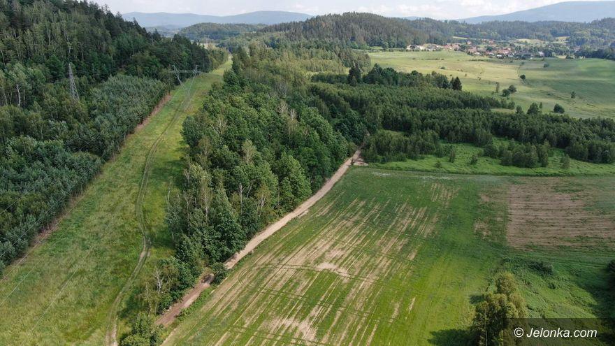 Jelenia Góra: Droga rowerowa w budowie