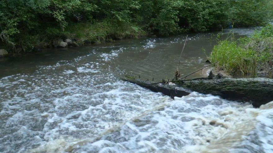Jelenia Góra: Potok Łomnica ponownie został zanieczyszczony
