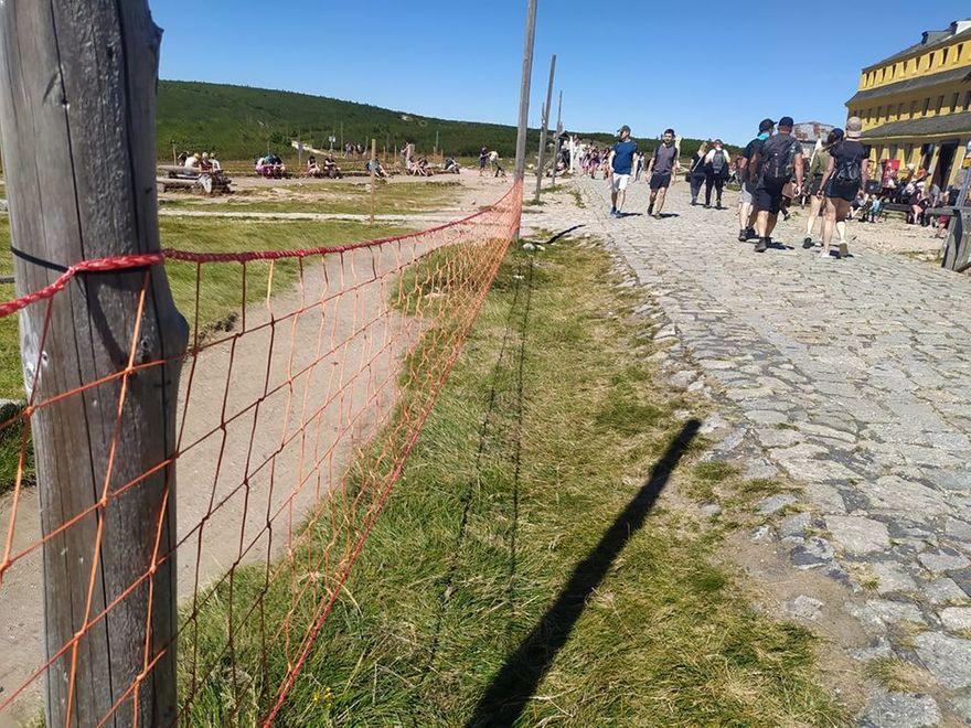 Karkonosze: Siatki mają chronić karkonoskie murawy