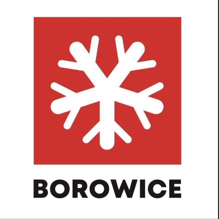Borowice: Borowice mają logotyp