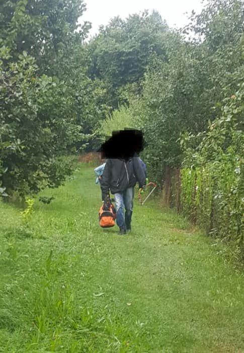 Jelenia Góra: Kradzieże na działkach