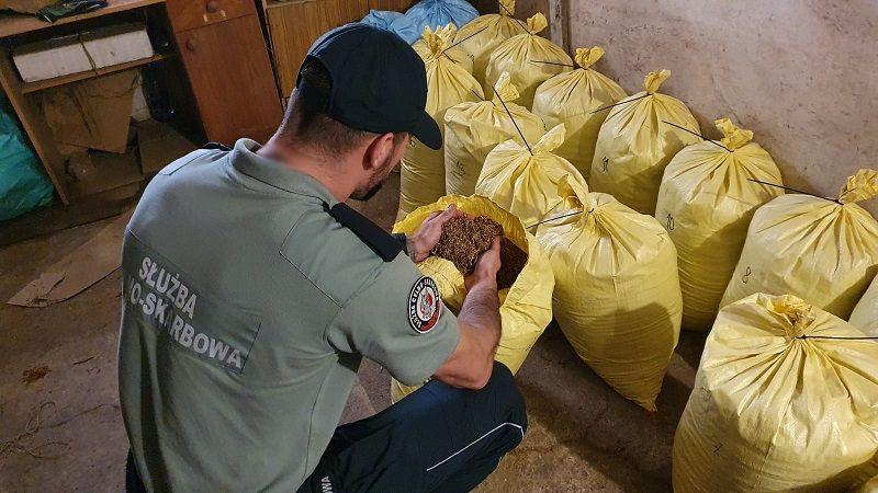 Region: Likwidacja nielegalnej wytwórni tytoniu