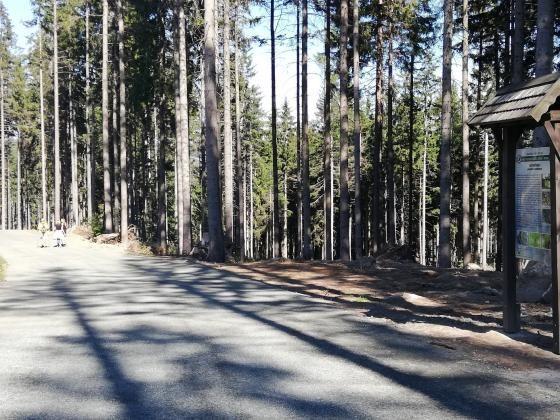 Janowice Wielkie: Droga na zamek Bolczów gotowa
