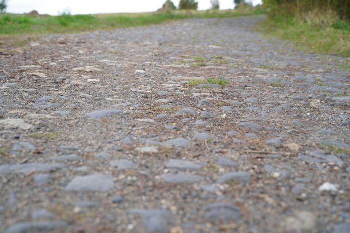 Pokrzywnik, Pasiecznik: Przebudowa drogi  nr 2510D
