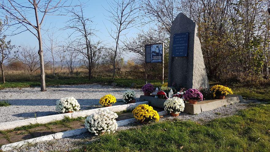 Bolków: Gmina dostała kwiaty