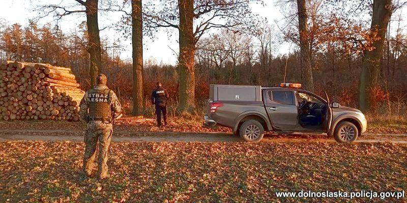 Lubań: Kontrole policjantów i strażników leśnych