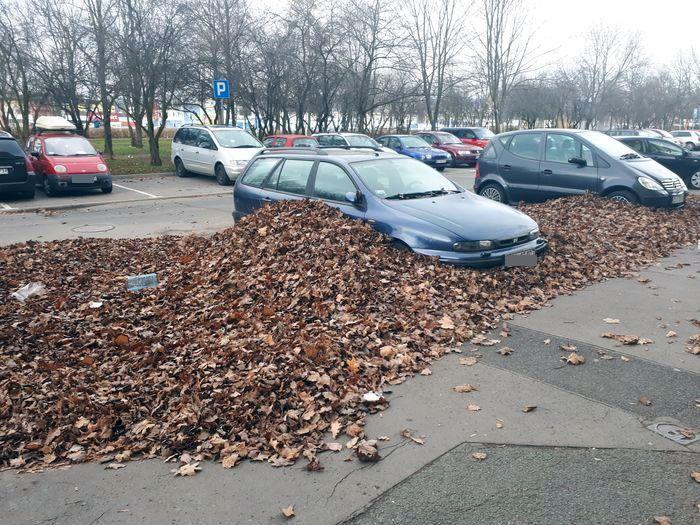 Jelenia Góra: Kto posprząta parking?
